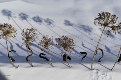 Schneearrangement