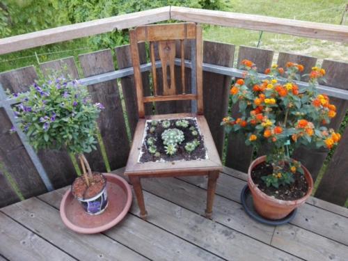 Holzstuhl mit Bepflanzung